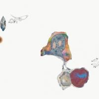 http://anthea-lubat.com/files/gimgs/th-7_synapsiesite_1.jpg